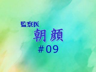 朝顔_09